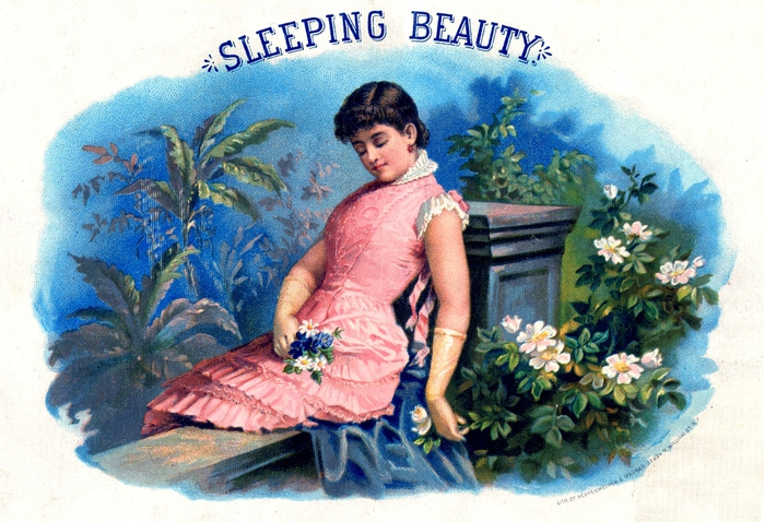 sleeping beauty vintage image gfairy2 (700x478, 315Kb)