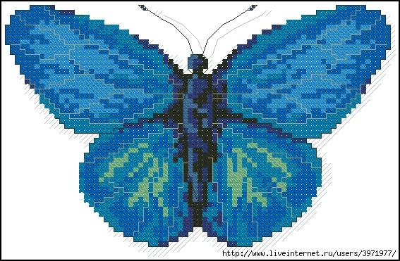 3971977_Butterflies_137 (567x371, 230Kb)
