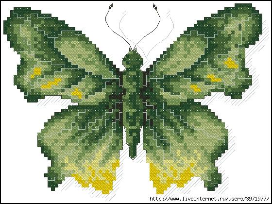 3971977_Butterflies_140 (560x420, 238Kb)
