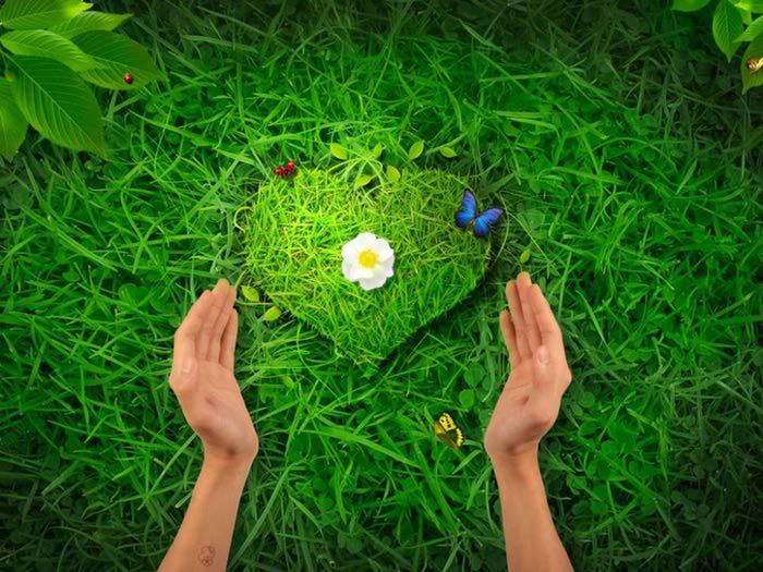 http://img1.liveinternet.ru/images/attach/c/5/87/133/87133339_6592933.jpg