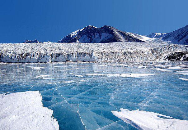 Синий лёд озера Фрикселл в Трансантарктических горах в Антарктиде (604x419, 70Kb)