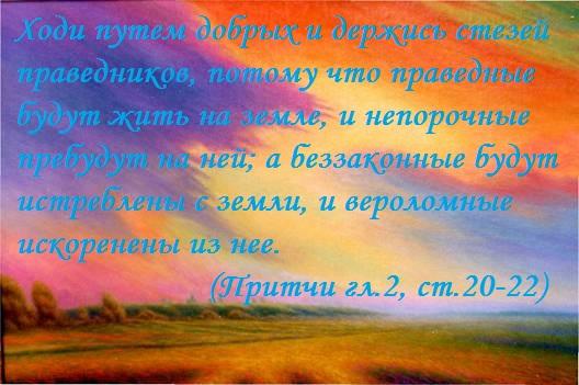 40536261_image0671 (528x351, 81Kb)