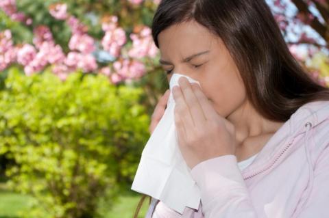 весенняя аллергия (480x319, 21Kb)