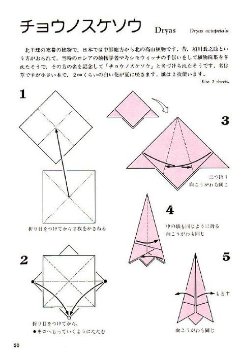 Momotani - Origami Alpine