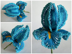 Превью crochet_iris (700x525, 161Kb)