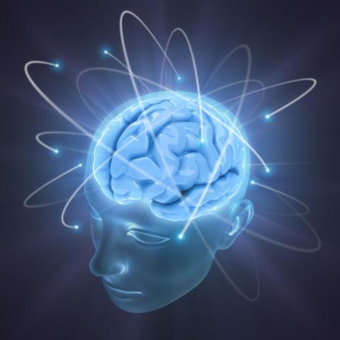 neuro (480x480, 38Kb)