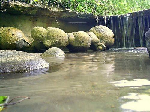 живые камни трованты румыния 1 (500x375, 357Kb)