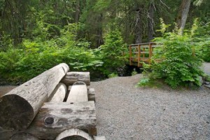 forest-trail-bench_10268-300x200 (300x200, 26Kb)