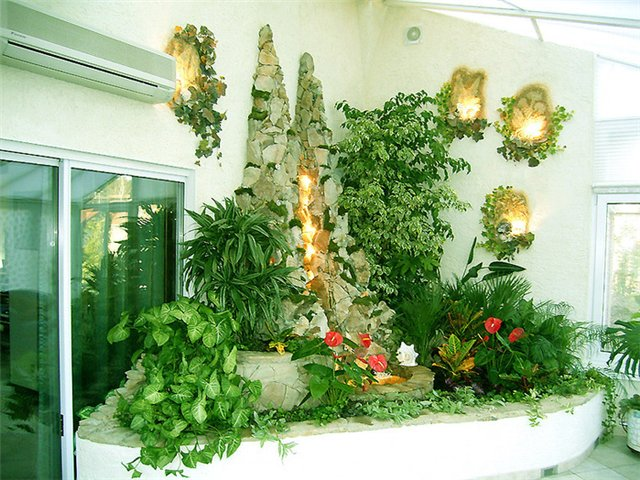 свойства комнатных растений/3185107_komnatnie_rasteniya_po_fenshyi (640x480, 96Kb)
