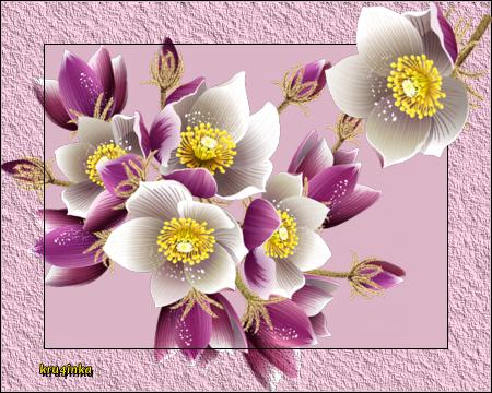 Рцветы (450x360, 324Kb)