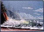 Превью Humboldt Coast (355x258, 68Kb)