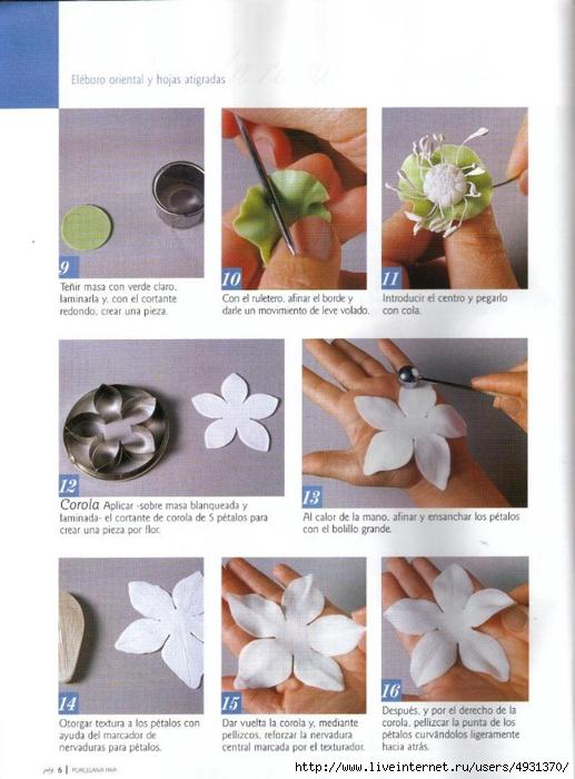 flores 02 pag 06 (517x700, 240Kb)