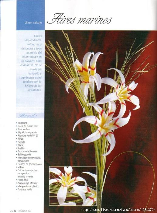 flores 02 pag 12 (517x700, 267Kb)