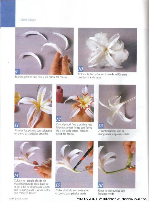 flores 02 pag 14 (517x700, 235Kb)
