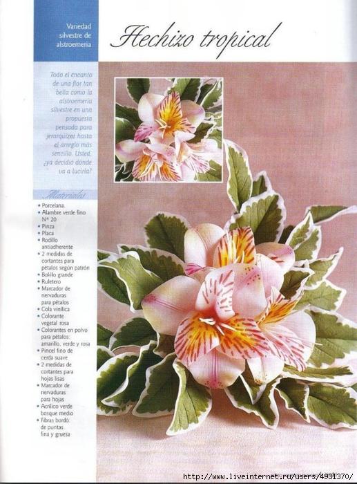 flores 02 pag 21 (517x700, 298Kb)