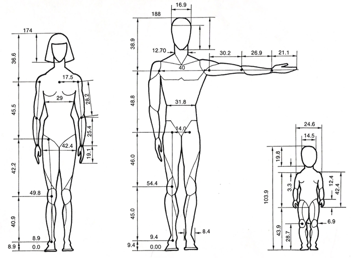 Human_proportions_by_BenTs_sTock (700x515, 132Kb)