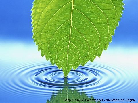 вода (480x360, 124Kb)