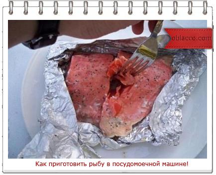 Как приготовить рыбу в посудомоечной машине!/3518263_riba (434x352, 235Kb)
