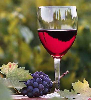 wine5 (363x400, 17Kb)