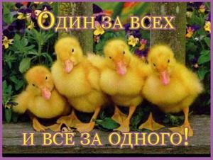 3387964_Dryzya_ytyata_200_k (300x226, 32Kb)