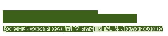 logo_02 (588x127, 13Kb)