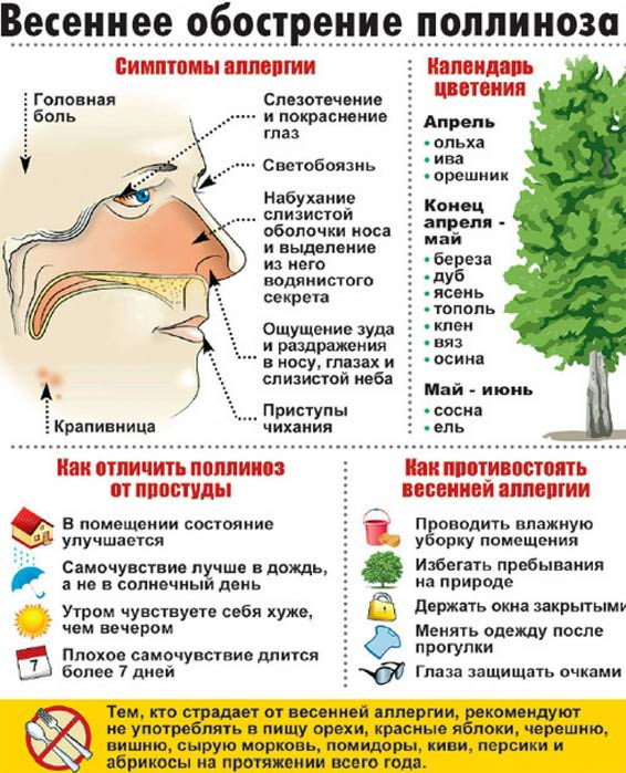 аллергия (566x700, 89Kb)