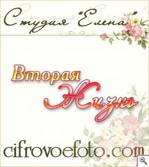logo-1_300x336_db233e9f7da8d1cf157a5c38f8cc3ea7 (300x336, 20Kb)