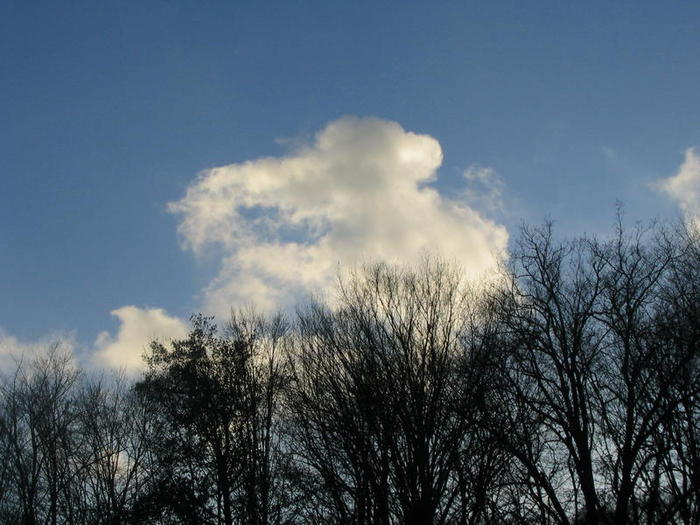 слоненок облачный (700x525, 64Kb)