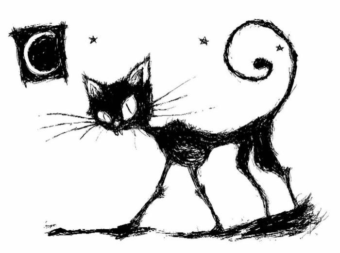 blackcat (700x522, 105Kb)