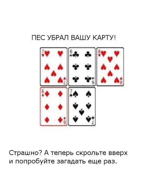 41i42tcpM9A (557x604, 33Kb)