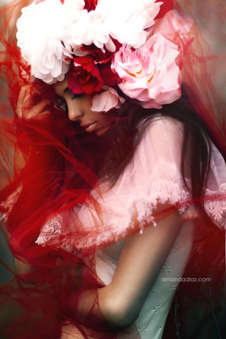 Романтичные fashion photo от Amanda Diaz 2 (466x700, 335Kb)