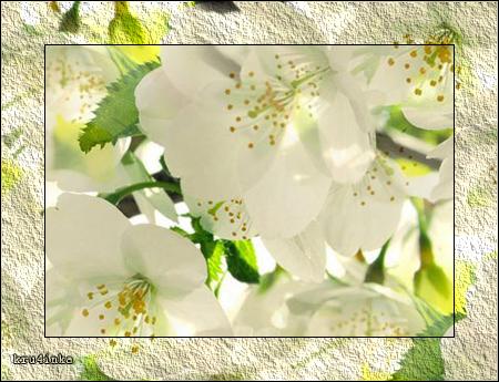 Весна (450x345, 318Kb)