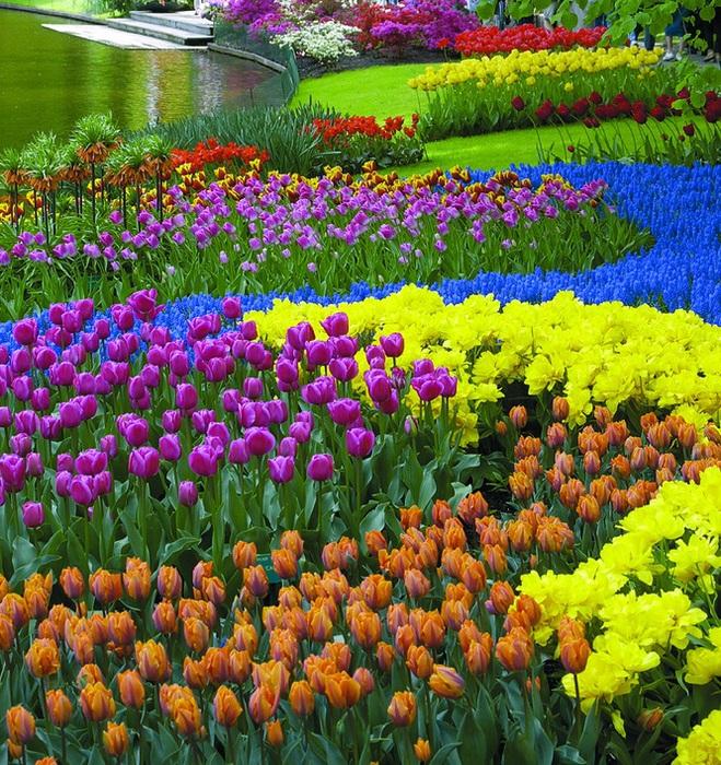 Материалы для цветник на даче