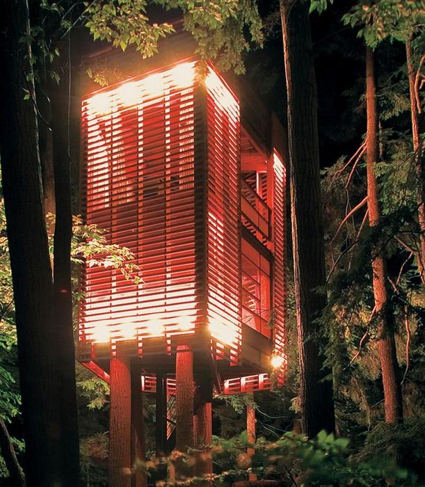 Дом на дереве в лесу неподалеку озера Мускоке 1 (611x700, 166Kb)