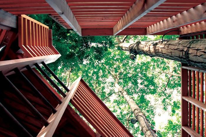 Дом на дереве в лесу неподалеку озера Мускоке 2 (700x466, 142Kb)