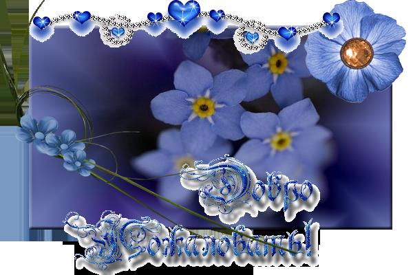 для голубых цветочков. (600x400, 303Kb)