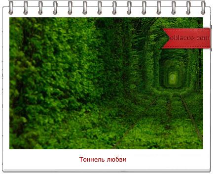 Тоннель любви. Украина