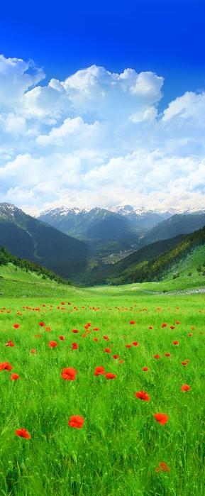 лес, поля (4) (289x700, 174Kb)