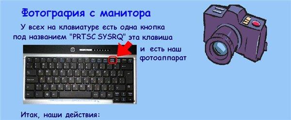 d250173575e4 (600x247, 31Kb)