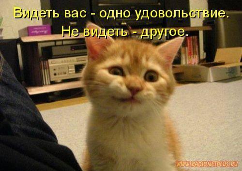 4442645_1224061475_p41_20 (500x353, 32Kb)
