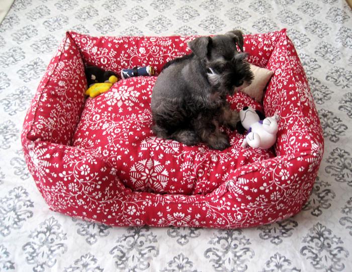 Шьем для собак мастер класс пошагово #8