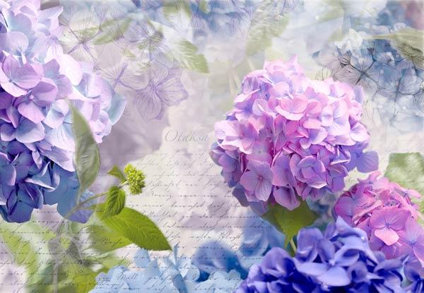 цветы (600x415, 47Kb)