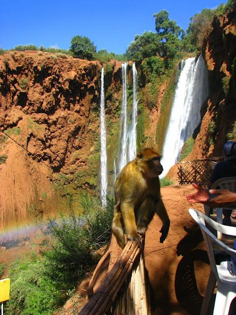 Водопад Узуд– Покрывало влюбленных в Марокко. 10460