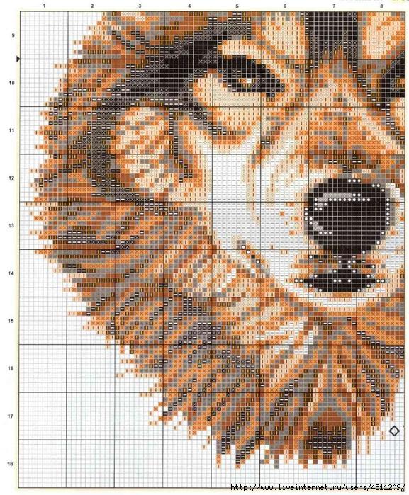 Wolves схема 3 (577x700,