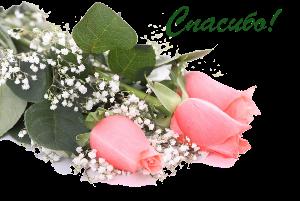 Gentile roses (33)копирование (300x201, 107Kb)