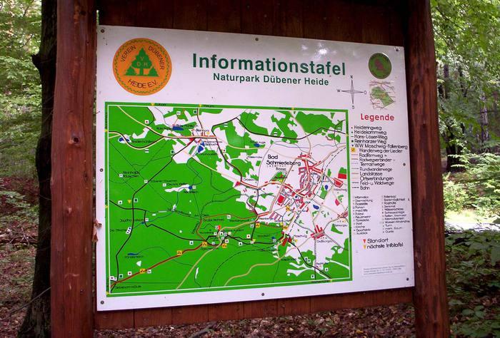 природный парк Дюбенская пустошь -и бобры. 62262