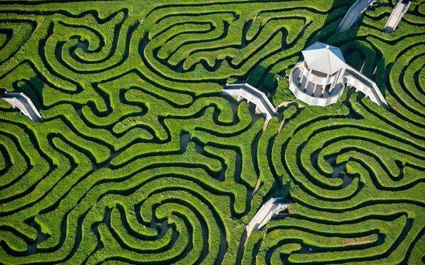 Лабиринт Лонглита имеет почти 3 км тропинок и является крупнейшим в Великобритании (604x377, 90Kb)