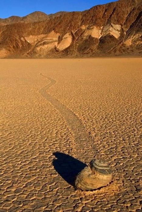 ползающие камни долина смерти фото 4 (468x700, 113Kb)
