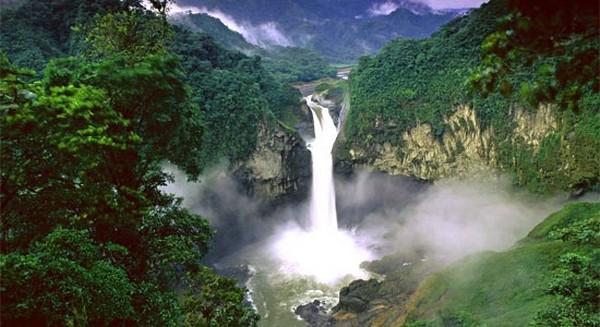 Самые красивые леса мира 10 (600x327, 66Kb)