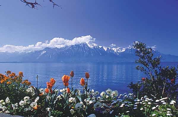 лаго-маджоре озеро фото